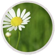 White Wild Flower Spring Scene Round Beach Towel