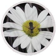 White With Bee Round Beach Towel