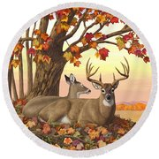 Whitetail Deer - Hilltop Retreat Round Beach Towel by Crista Forest