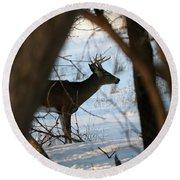 Whitetail Deer Threw The Trees Round Beach Towel