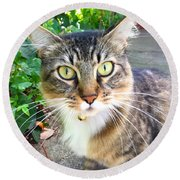 Who Are You? Round Beach Towel