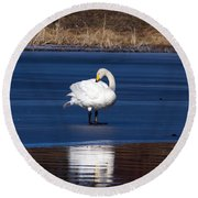 Whooper Swan 2 Round Beach Towel
