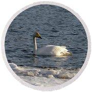 Whooper Swan Nr 3 Round Beach Towel