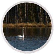 Whooper Swan Of Liesilampi 3 Round Beach Towel