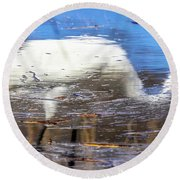 Whooping Crane Reflection Round Beach Towel