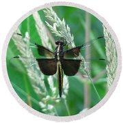 Widow Skimmer Dragonfly Round Beach Towel
