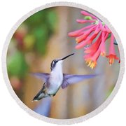 Wild Birds - Hummingbird Art Round Beach Towel