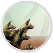 Wild Dog Round Beach Towel