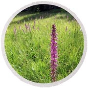 Wild Flowers In The Uinta's Round Beach Towel