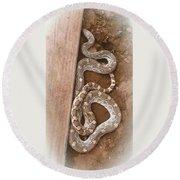 Wild Friendly Gopher Snake Round Beach Towel