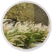 Wild Grass Along An Alley Wall Round Beach Towel