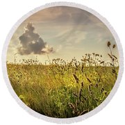 Wild Grass And A Lonely Cloud Round Beach Towel