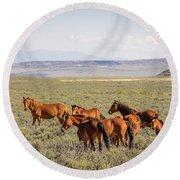 Wild Horse Mesa Round Beach Towel