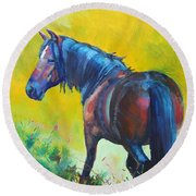 Wild Horse On Dartmoor - Roaming Free Round Beach Towel