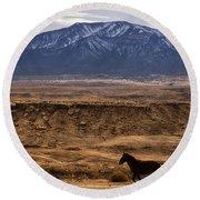 Wild Horse On The Run Round Beach Towel