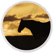 Wild Horse Sunrise Round Beach Towel