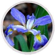 Wild Iris 3 Round Beach Towel
