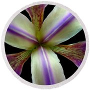 Wild Iris Macro On Black Round Beach Towel