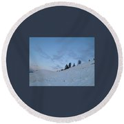 Wild Majesty Round Beach Towel