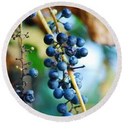 Wild Michigan Grapes Round Beach Towel