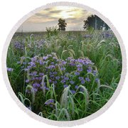 Wild Mints And Foxtail Grasses At Glacial Park Round Beach Towel