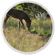 Wild Mountain Lupine Round Beach Towel