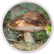 Wild Mushroom Round Beach Towel