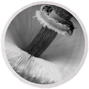 Wild Mushroom- B And W Round Beach Towel