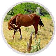 Wild Mustang Round Beach Towel