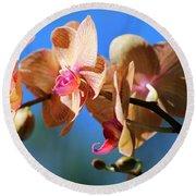 Wild Orchid Round Beach Towel