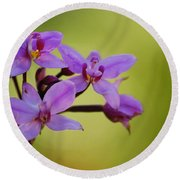 Wild Orchids 2 Round Beach Towel