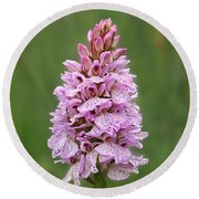 Wild Pink Spotted Orchid Round Beach Towel