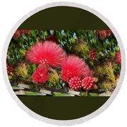 Wild, Red Fluffy Flowers  Round Beach Towel