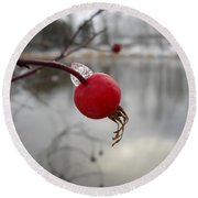 Wild Rose Hip On Mississippi River Bank Round Beach Towel