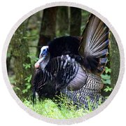 Wild Turkey 1 Round Beach Towel