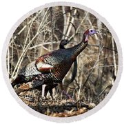 wild Turkey 2 Round Beach Towel