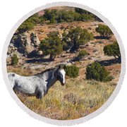 Wild Wyoming Round Beach Towel