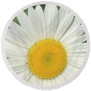 Wilddaisy Round Beach Towel