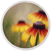 Wildfire Wildflowers  Round Beach Towel