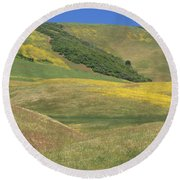 Wildflower Display - Salisbury Potrero Round Beach Towel