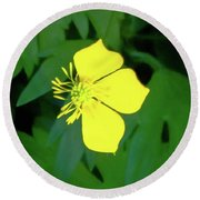 Small Sundrops Flower Round Beach Towel