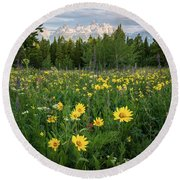 Wildflower Meadow In The Tetons Round Beach Towel by James Udall