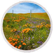 Wildflower Wonders Of The High Desert Round Beach Towel