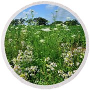 Wildflowers Along Country Road In Mchenry County Round Beach Towel