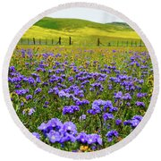 Wildflowers Carrizo Plain Round Beach Towel