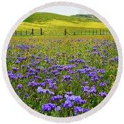Wildflowers Carrizo Plain National Monument Round Beach Towel