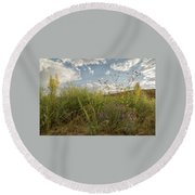 Wildflowers Of Chaco Round Beach Towel