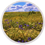 Wildflowers Of The Carrizo Plain Superbloom 2017 Round Beach Towel