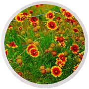 Wildflowers On The Barb Round Beach Towel
