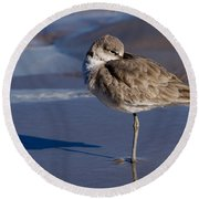 Willet Resting At The Beach Round Beach Towel